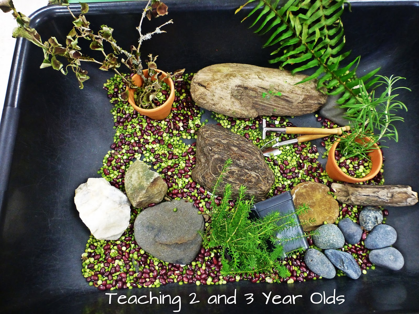 preschool ideas for the sensory table