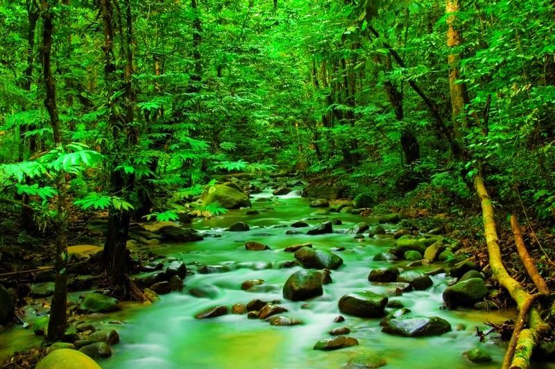 http://relakssminda.blogspot.com/2014/01/santai-tenang-nyaman-syukur.html