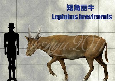 vacas prehistoricas Leptobos
