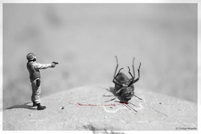 Uccidere lo scarafaggio