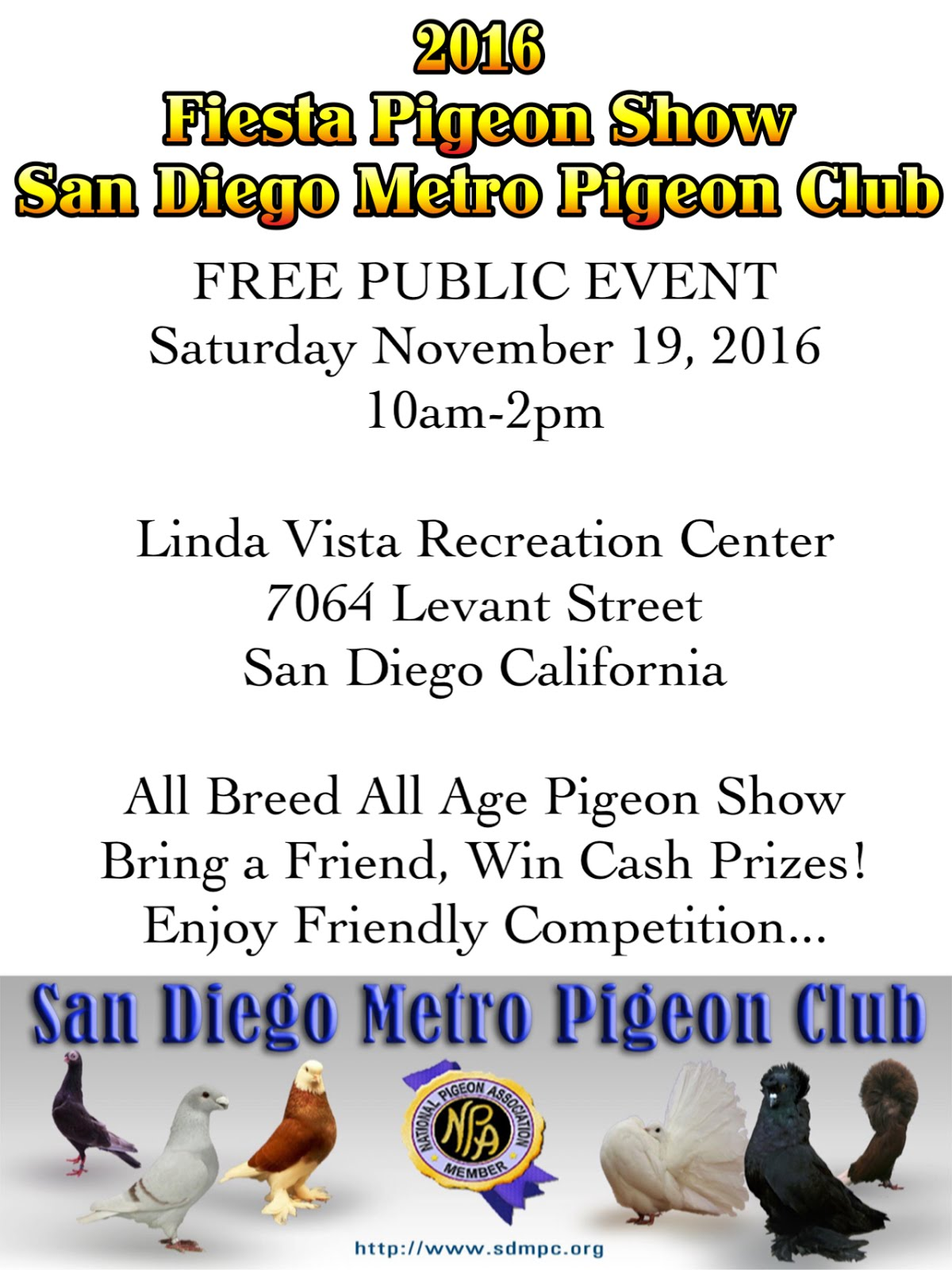 San diego pigeon show for Waimanalo feed supply