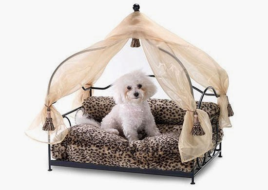 Curtain Ideas: Canopy dog beds for small dogs