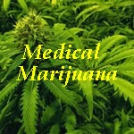 New Mexico's Medical Marijuana Resources