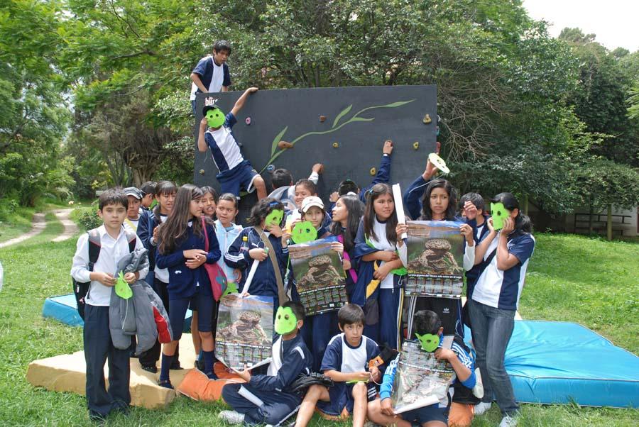 Initiative pour les amphibiens de bolivie la journ e de for Idees lucratives