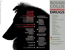 Productos químicos que NUNCA-JAMÁS recomendaré  ni suministraré a mis rough collies