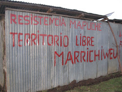 Resistencia Mapuche