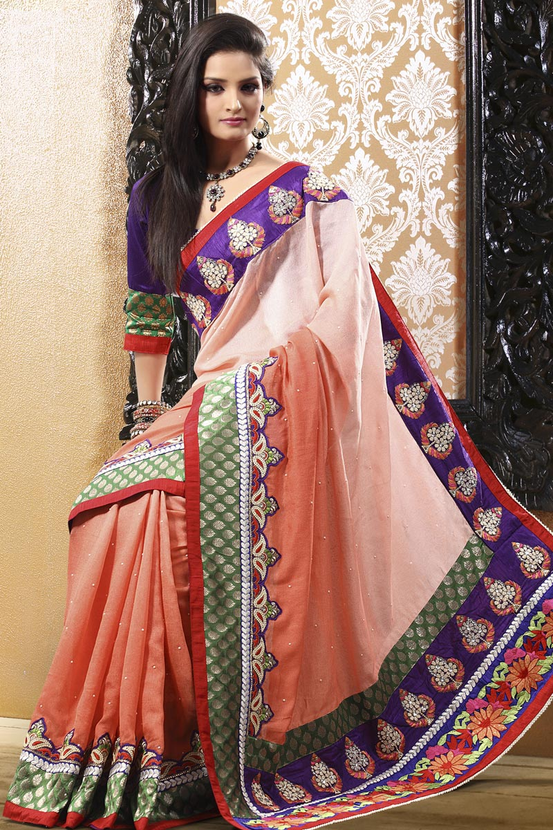 Party Wear Beautiful Indian Saree Collection 2013