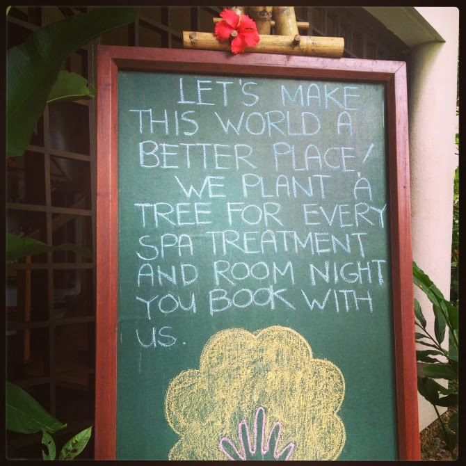 Book a treatment and get a tree!