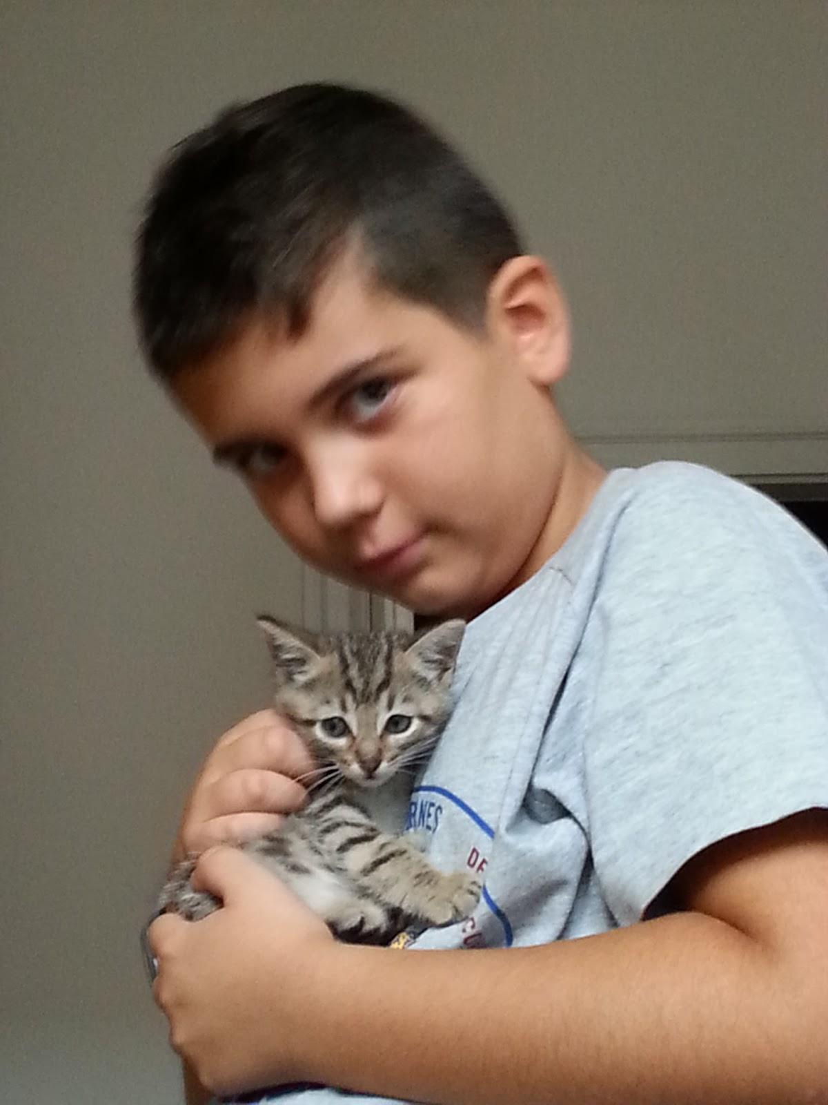 Lavori in corso la mia famiglia 2 for Allontanare i gatti