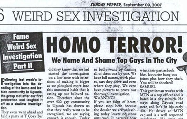 gay aimal sex