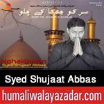 http://www.humaliwalayazadar.com/2015/09/syed-shujat-abbas-nohay-2016.html