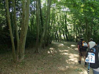 El sender és obac i fresc al seu pas pel fons de la vall