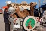Marrocos 2014