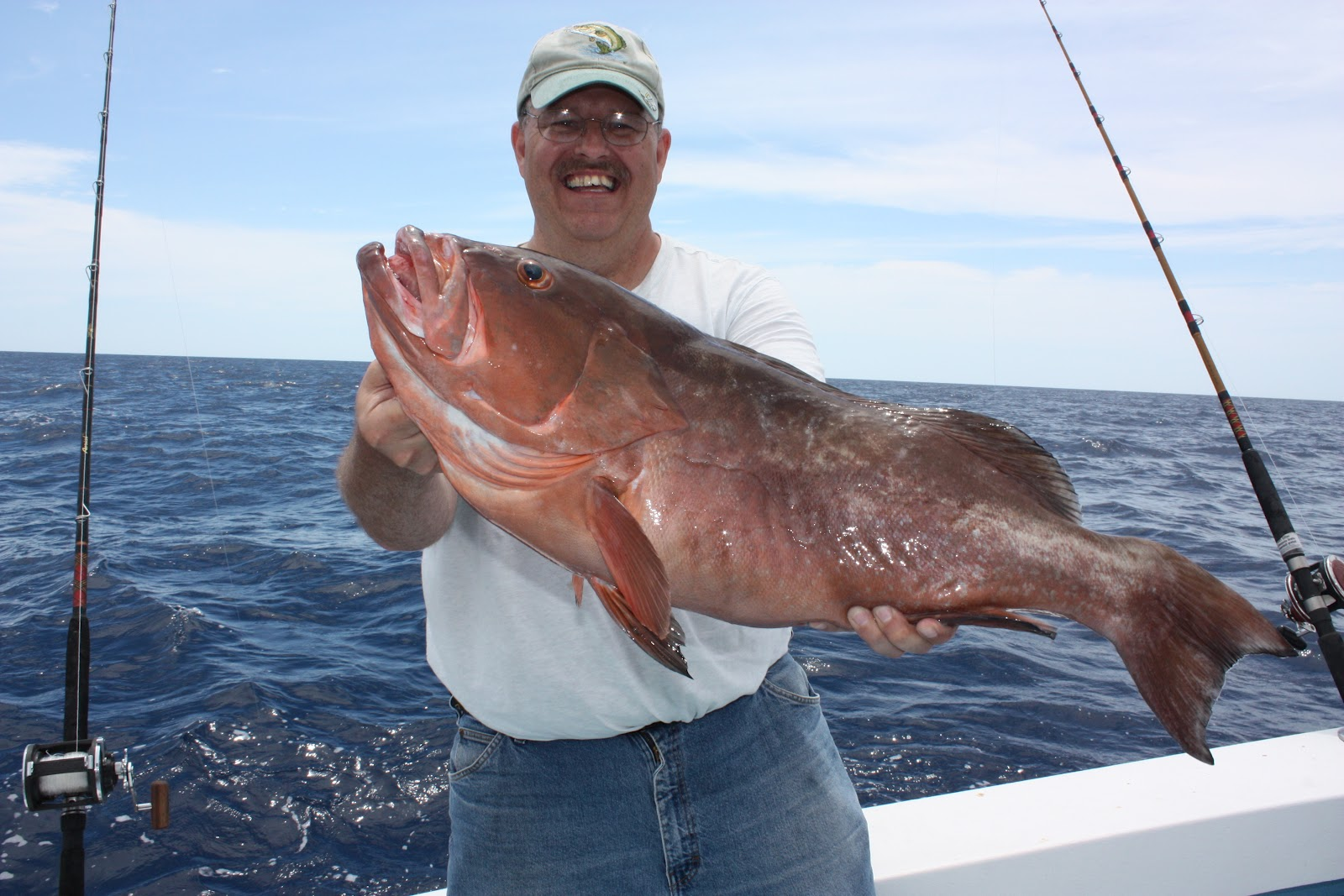 Show me the fish charters celebrating shark week for Deep sea fishing anna maria island