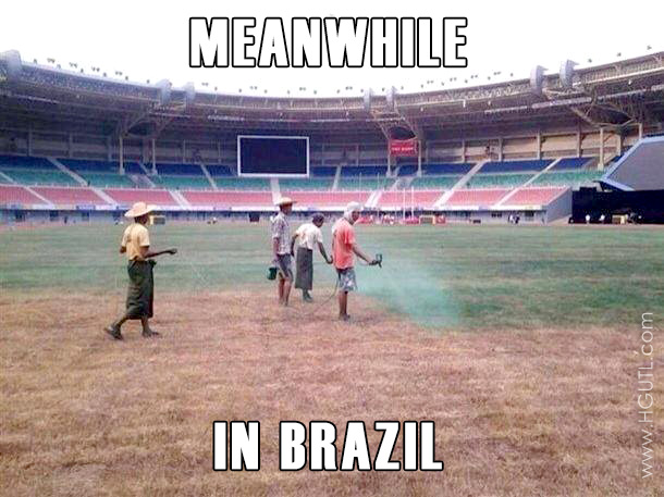 World Wildness Web Meanwhile In Brazil