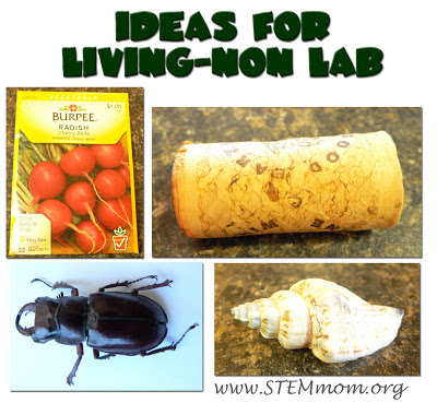 Ideas for Living-Nonliving Lab Stations: STEMmom.org