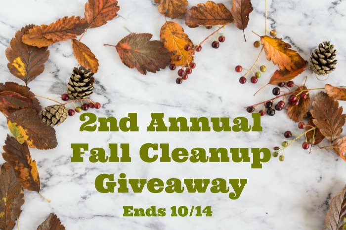 2nd Annual Fall Clean Up Giveaway