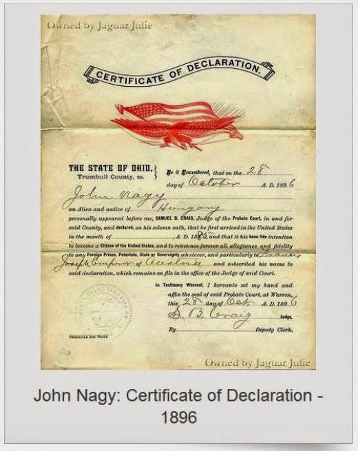 John Nagy Certificate of Declaration 1896