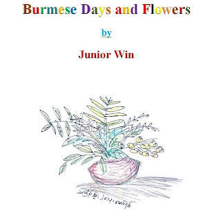 Junior Win – e-book – Burmese Days and Flowers (Amazon Kindle Edition)