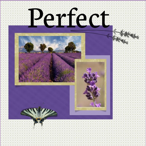 Aug. 2016 Greetingscard Bonus Qpage Lavendel