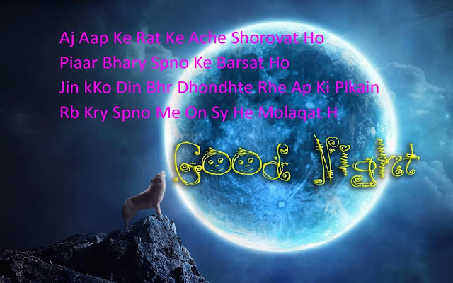 Good Night SMS Messages For Love In Hindi-Images