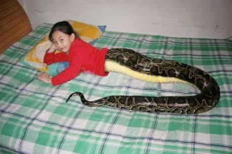 snake-girl