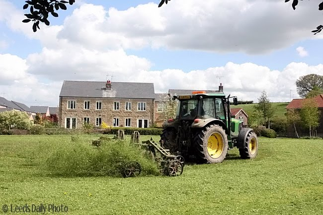 Thorner Village Grass Cutting