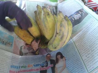 ลักษณะกล้วยก่อนที่จะเข้าตู้เย็น