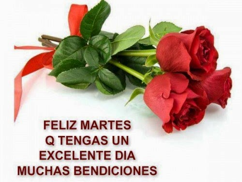 feliz martes amor con rosas
