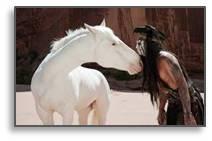 The Lone Ranger, Silver, Tonto
