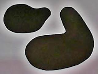Imagem de moldes de girafinha