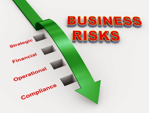 Business Plan Risks