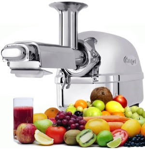Stainless Steel Angel Juicer