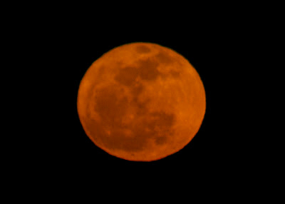 big orange full moon