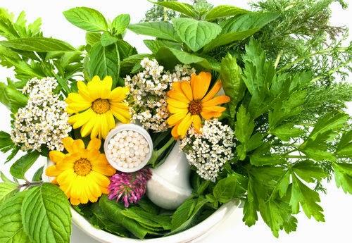 spsoby na ból głowy zioła