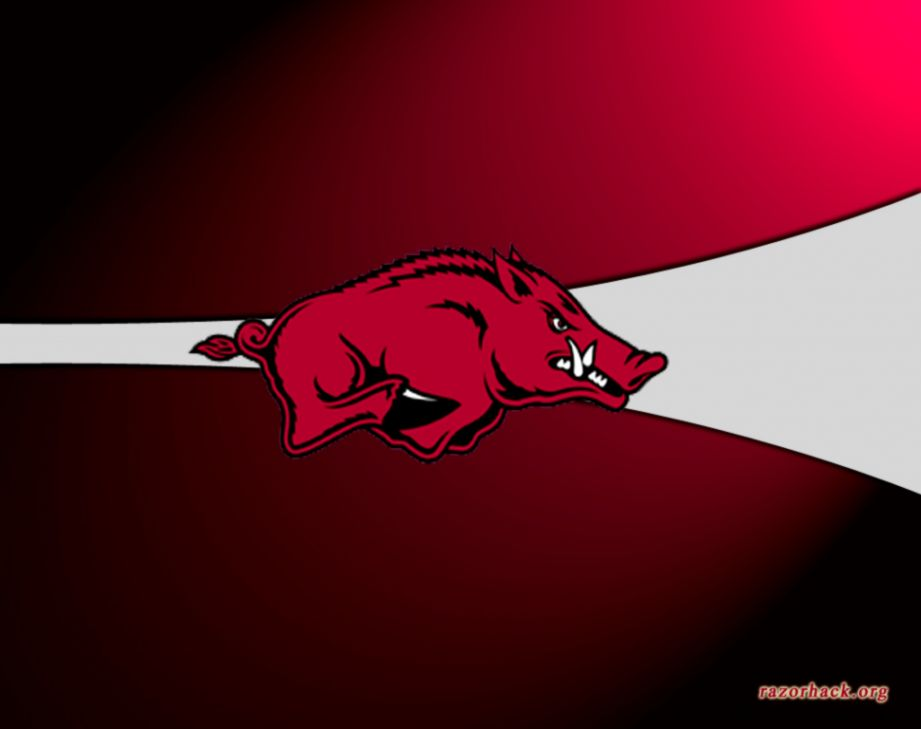 Razorback Wallpaper Hd Wallpapers Plus HD Wallpapers Download Free Images Wallpaper [1000image.com]