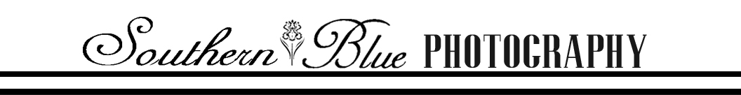Southern Blue Photography