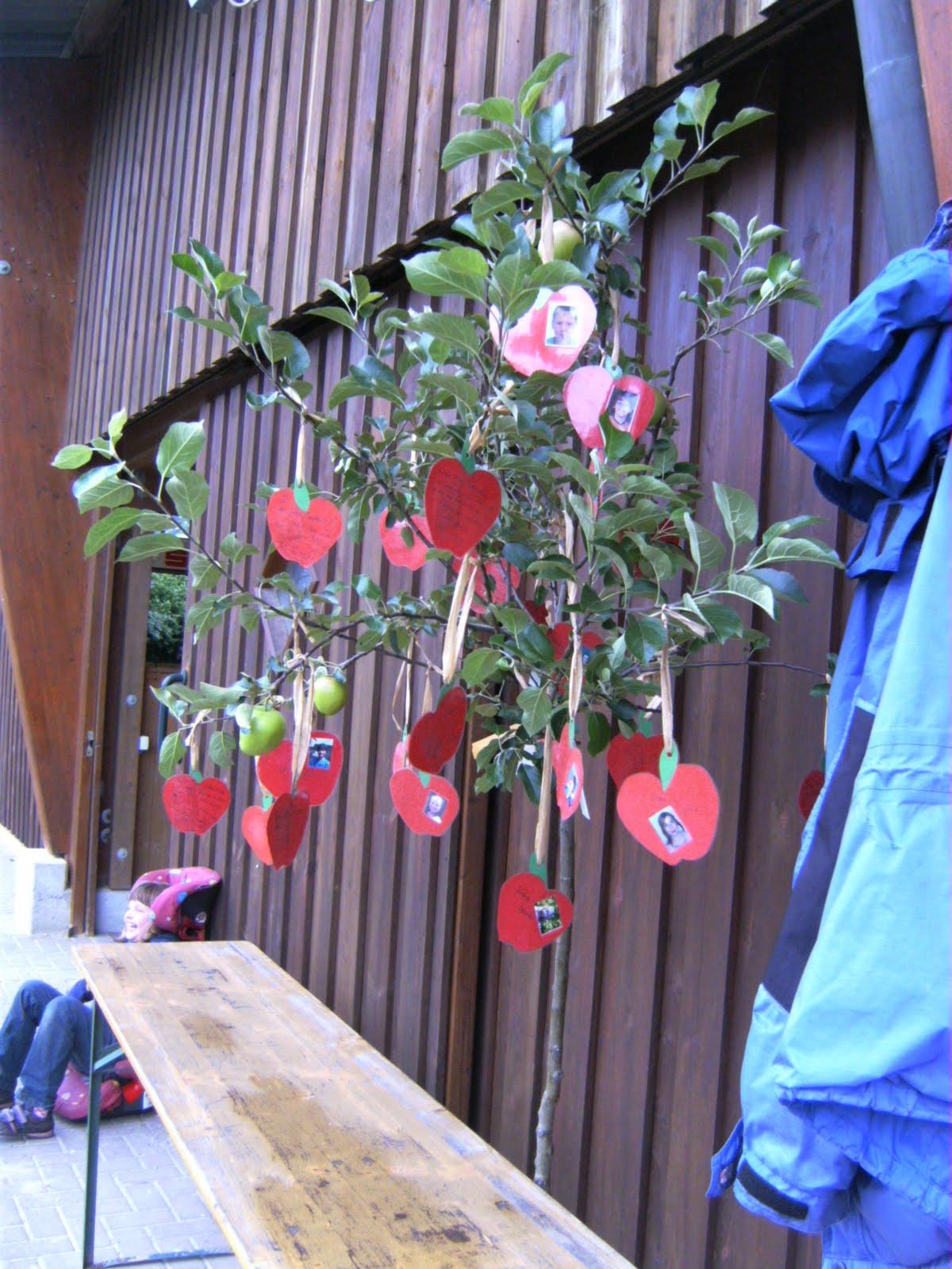 foenis welt apfelbaum zum abschied. Black Bedroom Furniture Sets. Home Design Ideas