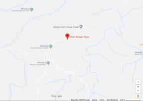 Peta Desa Bungur Raya
