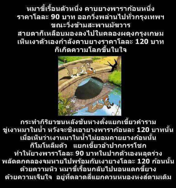 S__8601621.jpg