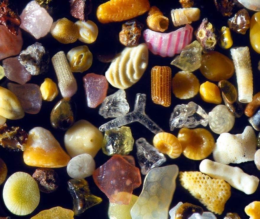 Grãos de areia sob as lentes de um microscópio