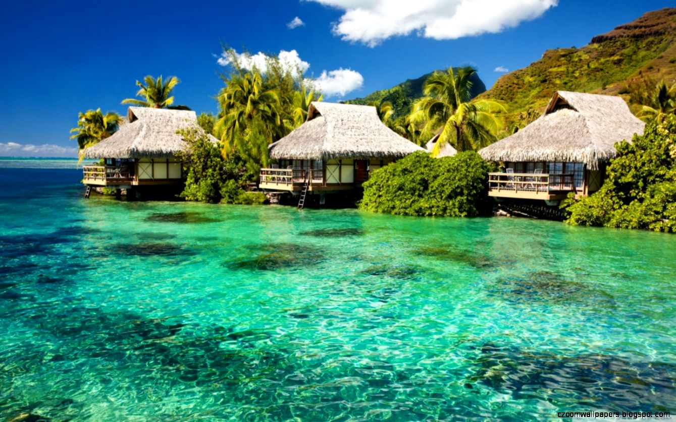 tropical resorts wallpaper background - photo #24