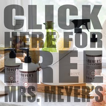 Free Mrs. Meyer's Spring Cleaning Kit from my friends at GROVE! Only through this weekend: