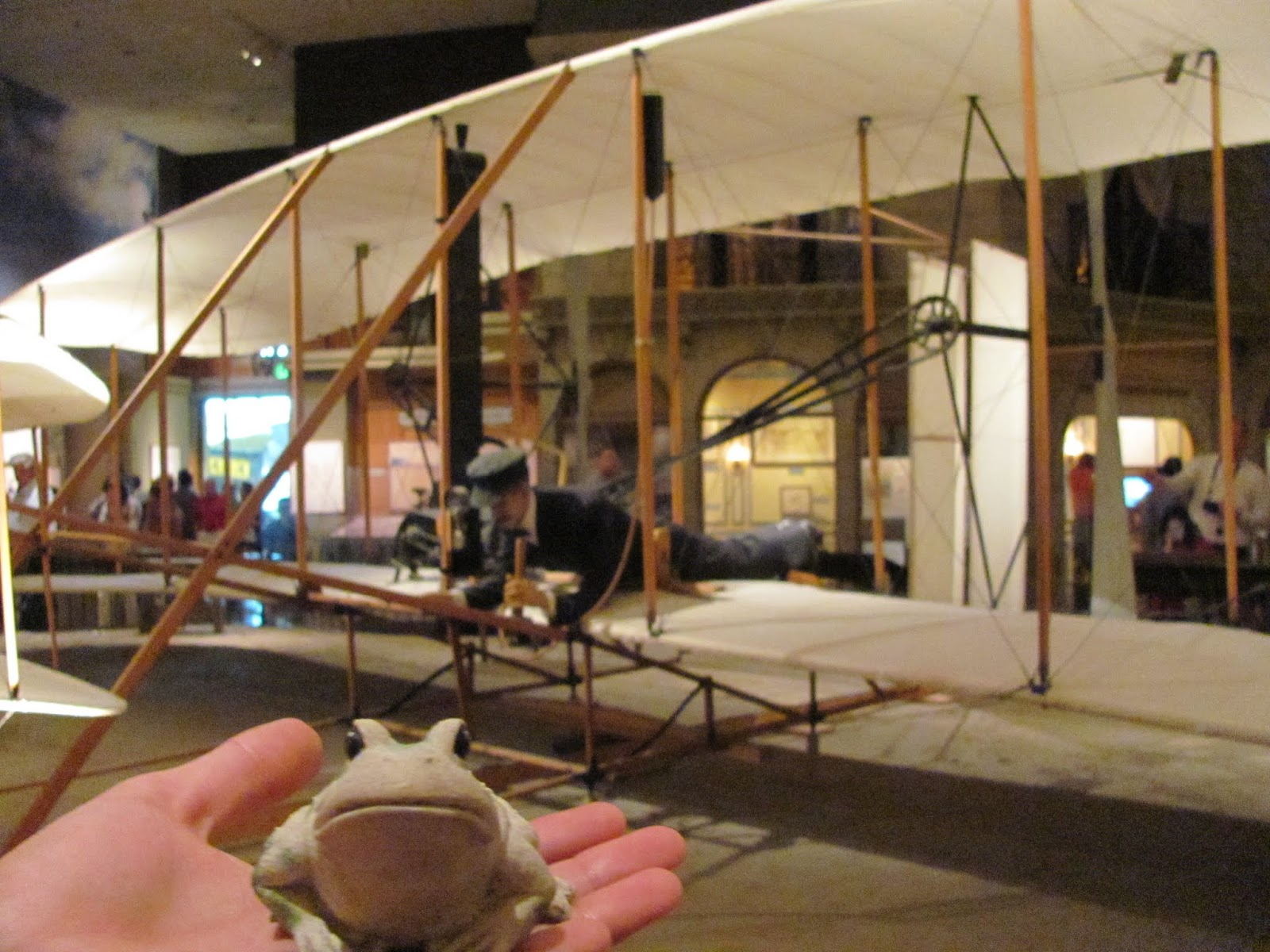 Frog poses with the Wright Brothers Plane at the Smithsonian Air and Space Museum in Washington, DC
