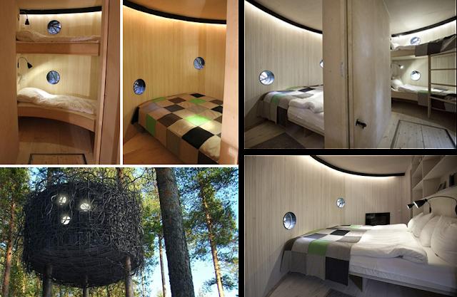 The Bird Nest, un hotel nido entre los árboles. Habitaciones interiores.