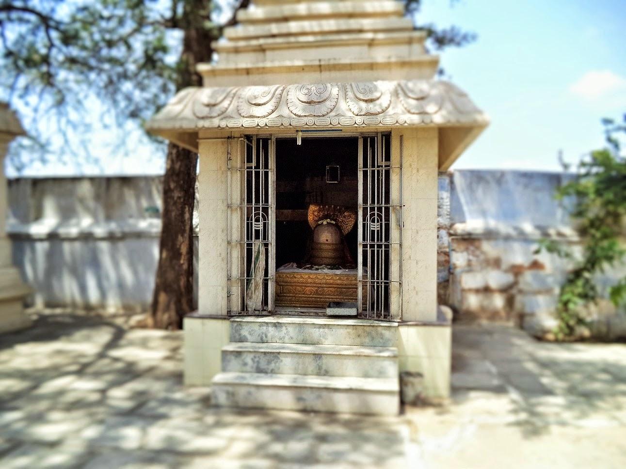 Theneeswarar Temple Vellalore Coimbatore, Vellalore; Coimbatore; India; Hindu; God; Hindu God; Temple; Theneeswarar Temple; Shiv; Shiva; Lord Shiva; Siva perumaan; eeshwar; Shiv Lingam in Theneeswarar temple, Vellalore, South India, Tamil Nadu,