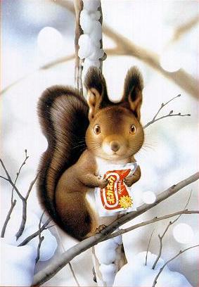makoto muramatsu squirrel