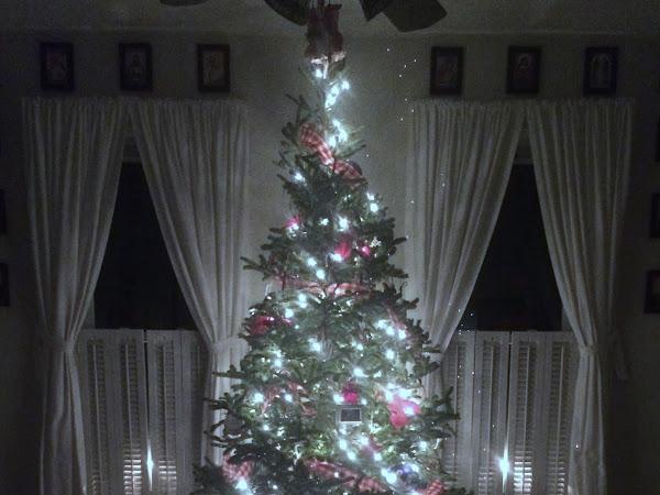 Christmas Eve Here