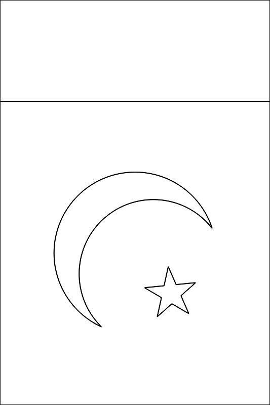 colorear bandera de Paquistan para imprimir