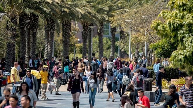 The Best Business Universities in Australia